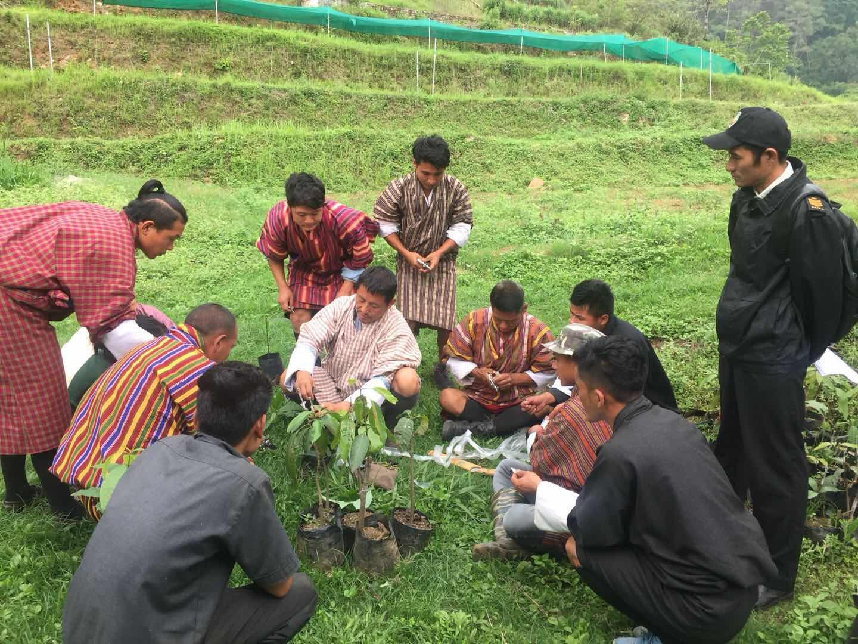 Rural Development Training Centre